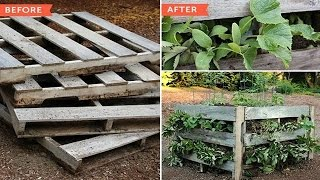 How To Make Raised Beds From Pallets
