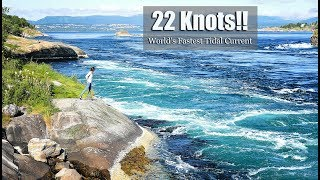 22 KNOTS!! The FASTEST Tidal Current in the WORLD!!  (MJ Sailing - Ep 127 Part 2)