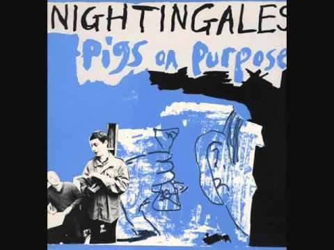 NIGHTINGALES - Pigs on Purpose - Amazon.com Music