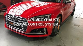Audi S5 Active Exhaust Valve Control System