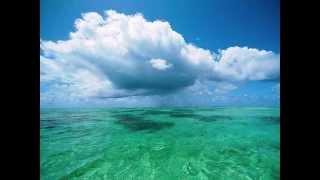 Aonua - Te Moana [The Ocean Blue]