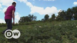 Gefahr durch Minen in Bosnien | DW Deutsch