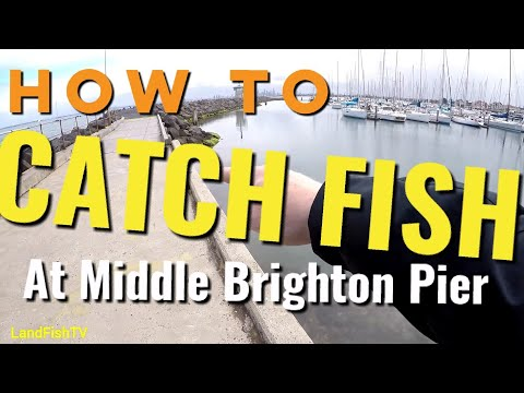 How to CATCH fish at Middle Brighton Pier