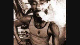 lee perry - i am a madman (complete)