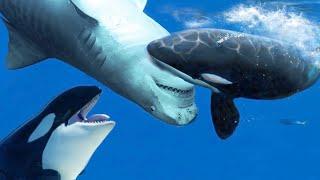 Косатка в деле. Как Косатки охотятся на Акул огромных Китов и Дельфинов