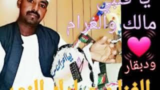الفنان مبارك النور يا قلبي مالك و الغرام
