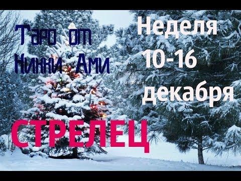 ♐ Стрелец 10-16 декабря. Таро неделя. Кармический прогноз от Никки Ами #никкиами #гадания #nykkyami
