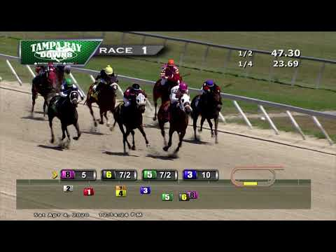 Tampa Bay Downs Replay 4/4/20 Race 1