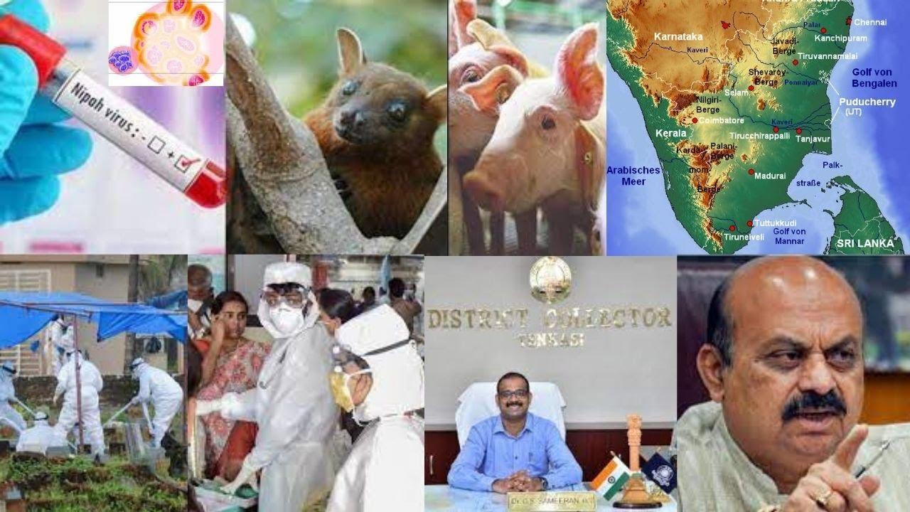 Dekahimna Kannada on alert after NIpah virus death in Kerala
