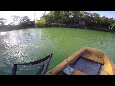 SK30 Carp Fishing