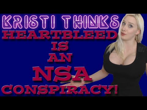 Heartbleed is an NSA Conspiracy