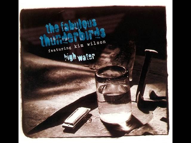 the-fabulous-thunderbirds-too-much-of-everything-music-forever