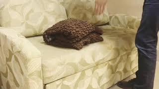 Чехол на диван универсальный обзор