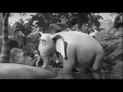 elefante gay