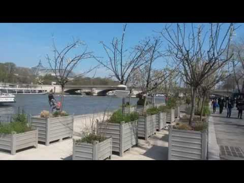 FRANCE  Paris   France    Balade le long des berges de la Seine