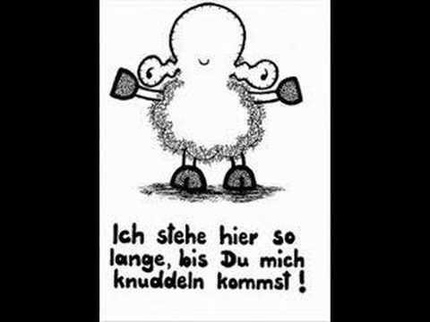 Knutsch Dich