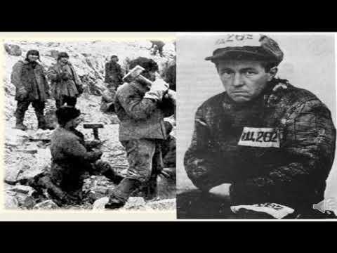 Какой масти в лагере на самом деле был Александр Солженицын?