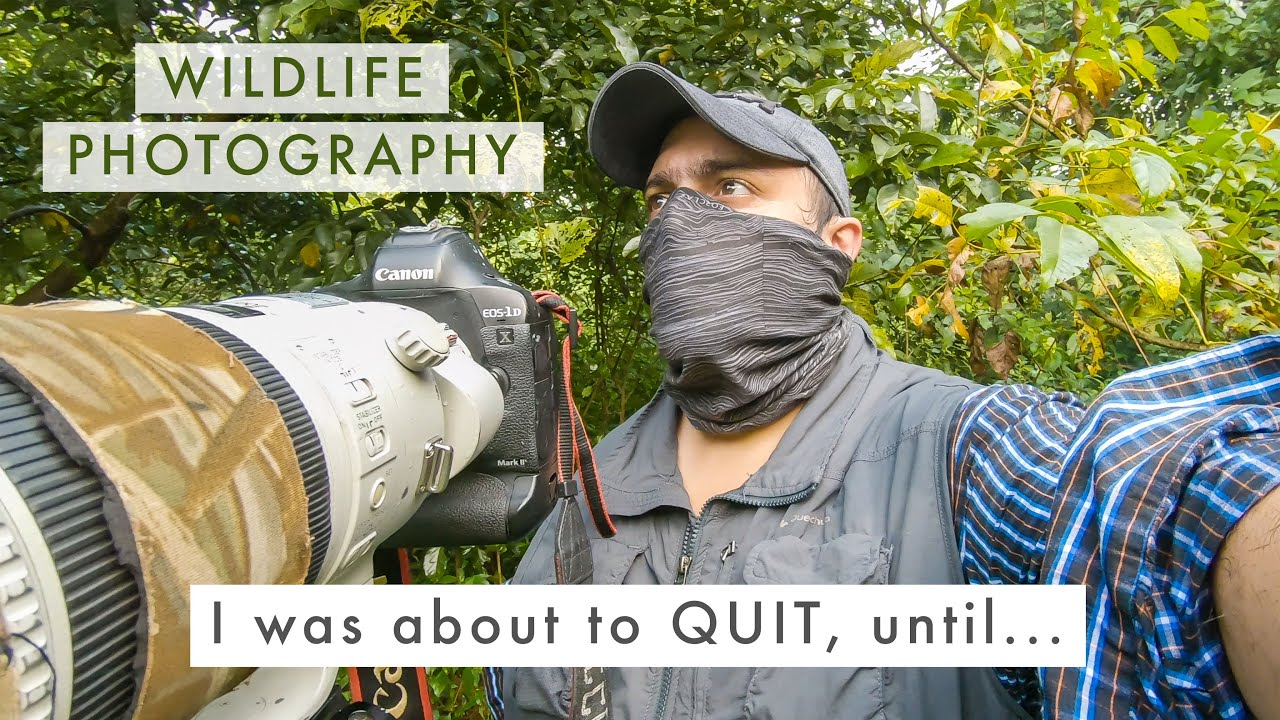 Turning FAILURE into SUCCESS   Wildlife Photography Blues + UPCOMING SERIES ANNOUNCEMENT