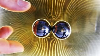 DIY Ferrocell, View Magnetic Fields with Ferrofluid | Magnetic Games