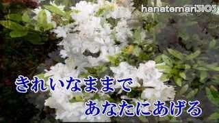 木村好夫  忘れてほしい  花のステージ360  渥美二郎