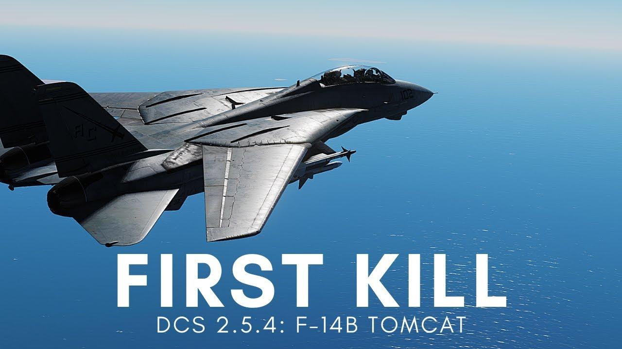 DCS 2 5: First Tomcat Kill with Heatblur's New F-14 Module