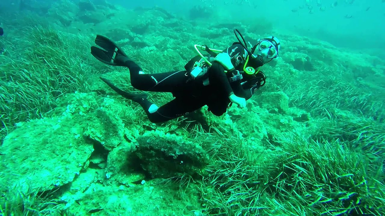Plongée Sous Marine 20m