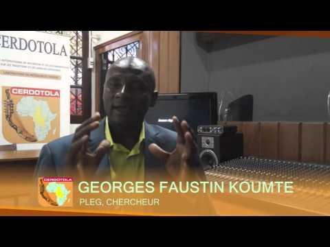 Séminaire TIC-Système Educatif : Itw de Koumte Georges Faustin