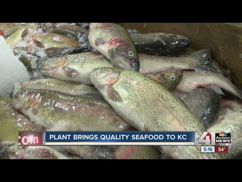 New processing plant of seafood company opens