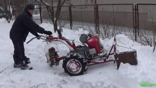 Мотоблок Мотор Сич в мороз -15! (масло 20W50)