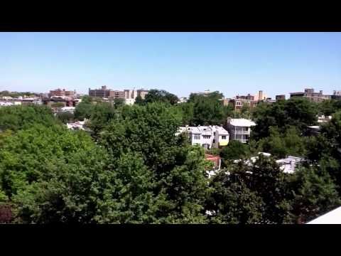 View from roof in Kalorama