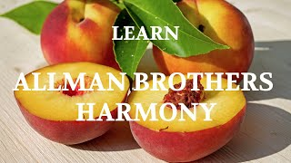 In The Mind Of: The Allman Brothers' Harmony