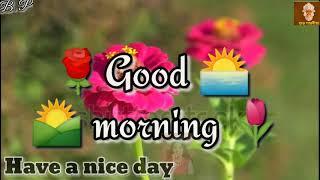 Good Morning Nagpuri videos Song //Good Morning WhatsApp Status Video 2020 //Good Morning //