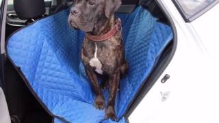 Автогамак для перевозки собак в машине