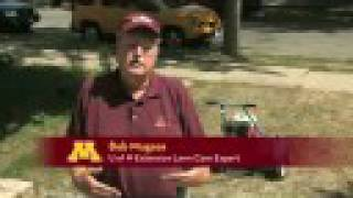 Fall lawn care tips from the U of M