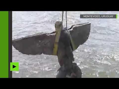 Uruguay : le grand aigle de bronze d'un croiseur nazi remonté à la surface