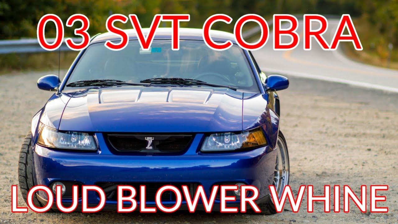 03 cobra stock whipple