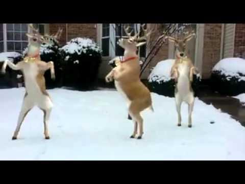 Dansende herten