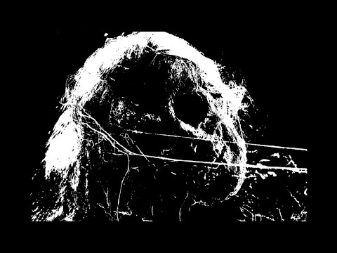 Putrefiance (France) - Left to Decay (EP) 2020
