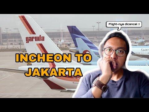 GARUDA VINTAGE : INCHEON TO JAKARTA |  LATEST ECONOMY CLASS EXPERIENCE