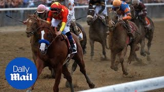 Justify wins the Belmont Stakes and completes the Triple Crown - Daily Mail
