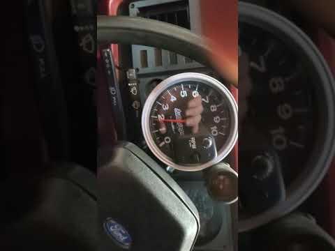 347 Stroker Mustang dyno pull
