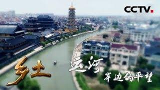 《乡土》 20190718 运河岸边的平望| CCTV农业