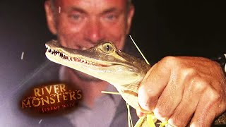 Catching A Young Caiman - River Monsters