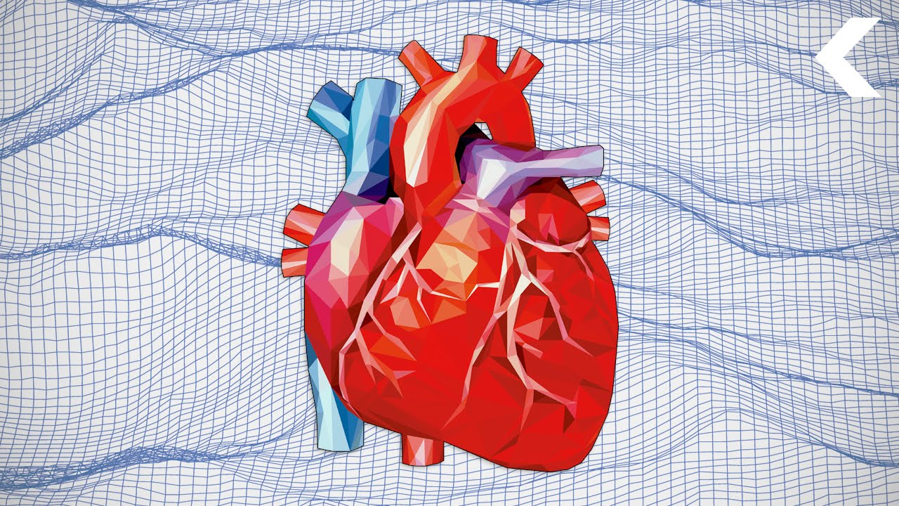 Revolutionizing Heart Surgery With Virtual Reality - YouTube
