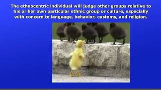 What is Ethnocentrism?
