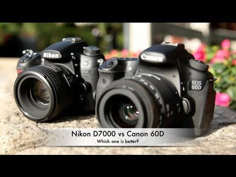Nikon D7000 vs Canon 60D - which one is better?