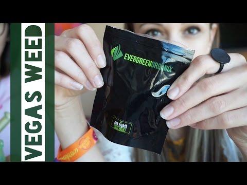 Vegas Weed Haul!