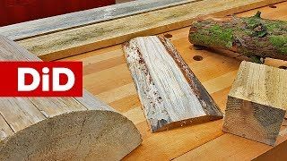 860. Sinizna drewna. Co to jest i jak sobie z nią radzić?