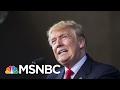 Did President Donald Trump s Labor Secretary Nominee Let Sex Offender Off Easy    AM Joy   MSNBC
