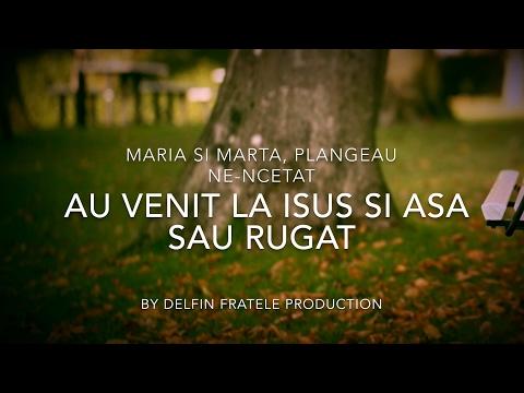 Negativ & Versuri - Lazar / Maria Si Marta Plangeau ( Sorin Din Barbulesti - Lazar ) [D.F.P]
